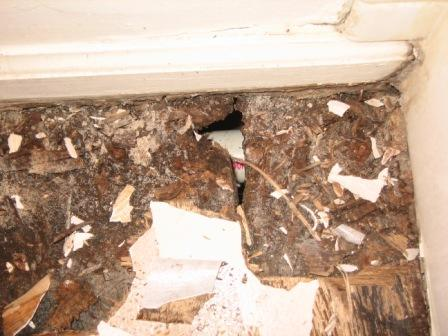 New Minnesota homeowner & found rotten bath subfloor...HELP!-img_0365.jpg