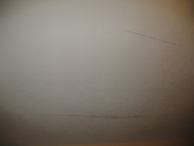 Water lines on sloped ceiling (pics attached)-img_0378.jpg