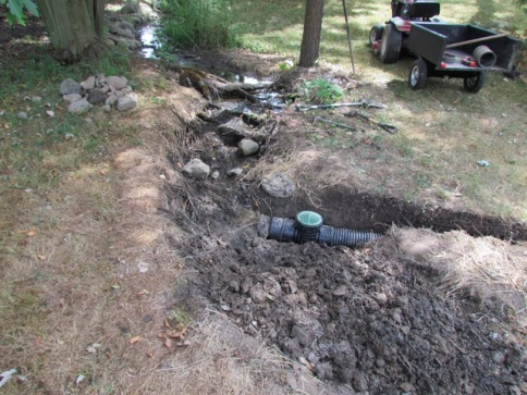 French Drain or some other idea for wet yard-img_0411.jpg