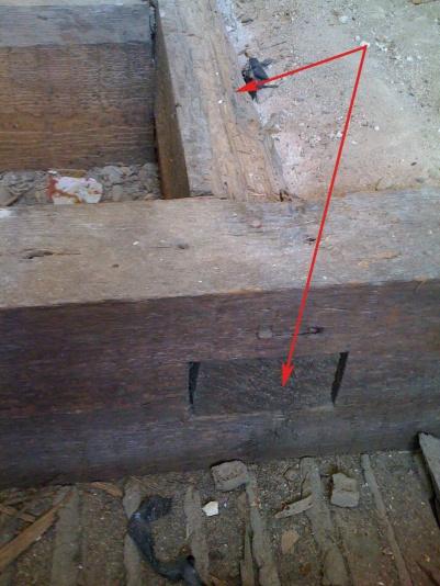 Sister joist, replace wood bean, what wood grain?-img_0441b.jpg