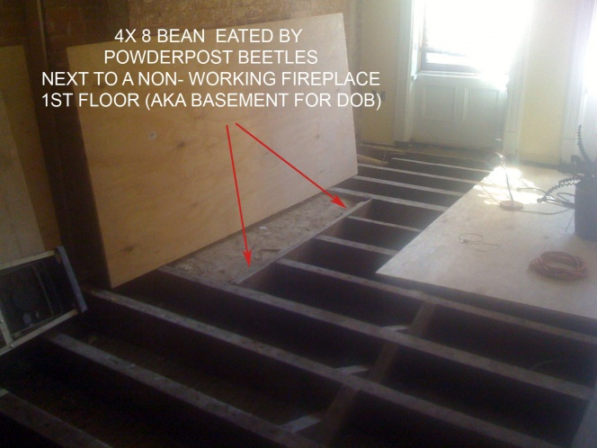 Sister joist, replace wood bean, what wood grain?-img_0445b.jpg