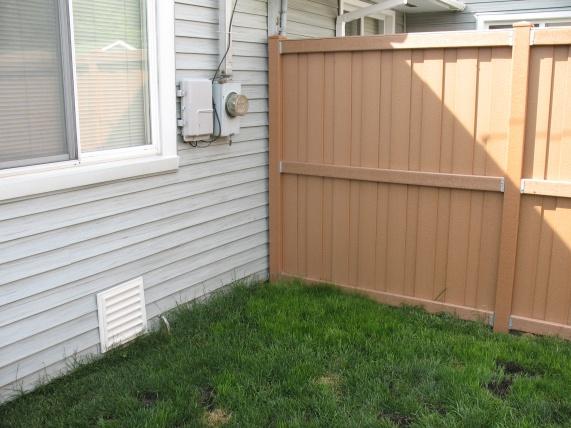Suggestions for corner of backyard that receives little sun.-img_0447.jpg