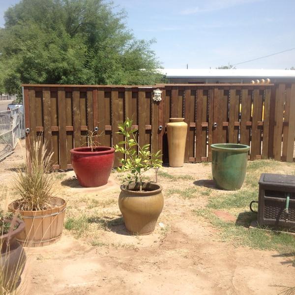 huge pots-img_0451.jpg