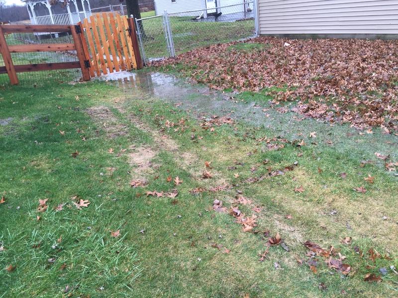 Yard Drainage-img_0517.jpg