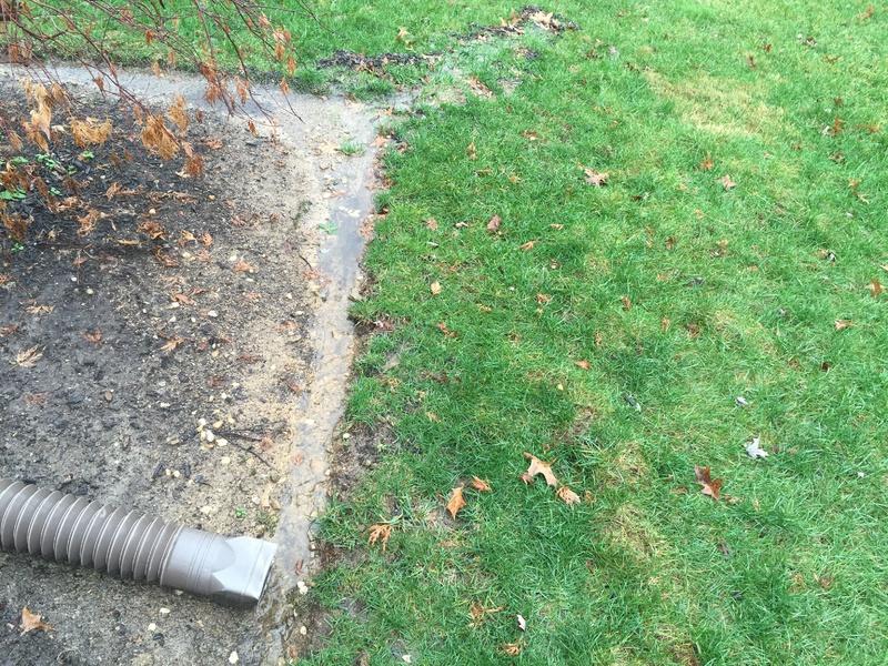 Yard Drainage-img_0520.jpg