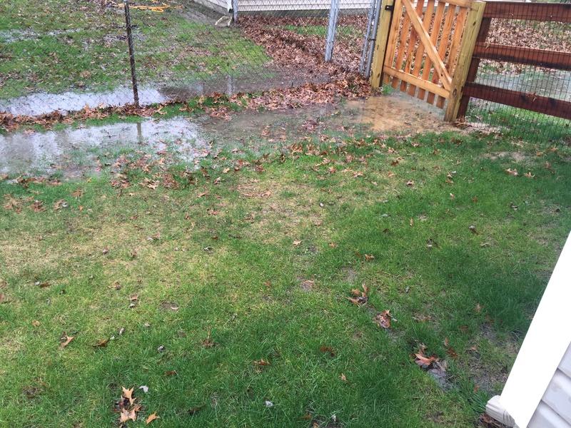 Yard Drainage-img_0522.jpg