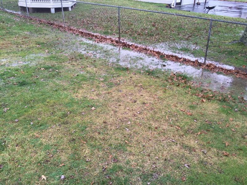 Yard Drainage-img_0523.jpg