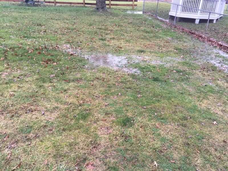 Yard Drainage-img_0524.jpg