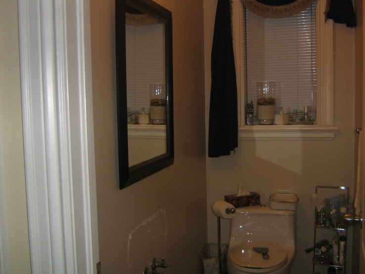 Take a look at my bathroom tiling and my fireplace-img_0645.jpg