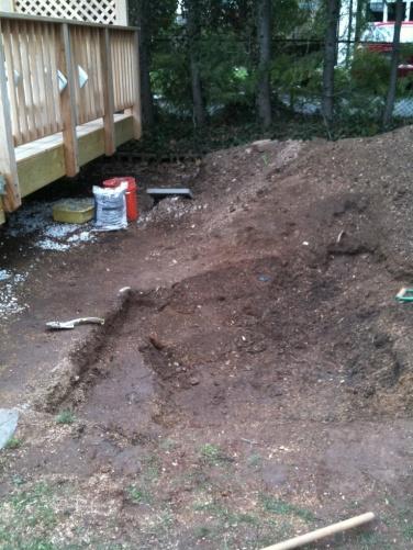 """Rent a stump grinder or """"hire"""" a stumpgrinder?-img_0652.jpg"""