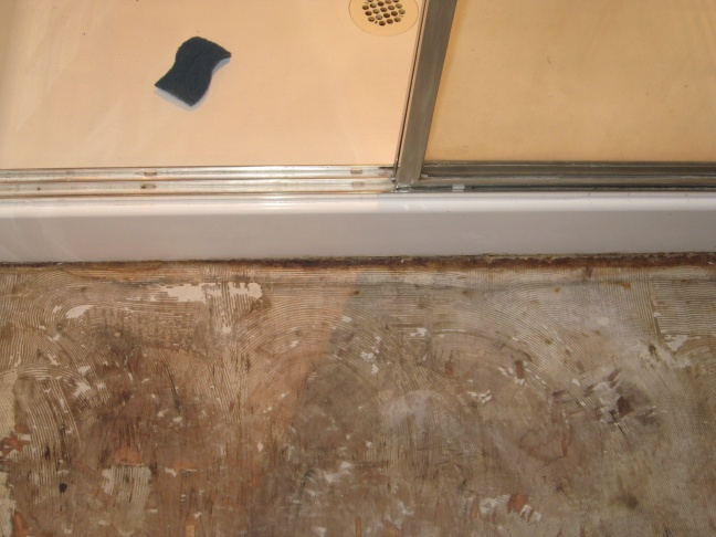 Just Took up my master bath Floor Help!!-img_0664.jpg