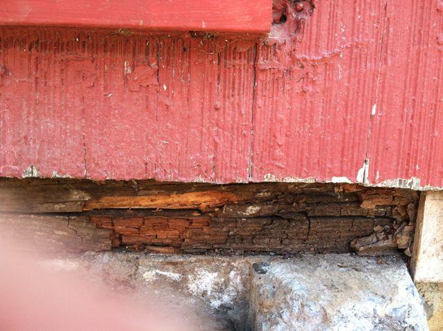 Sill Plate Rot in one spot-img_0665.jpg