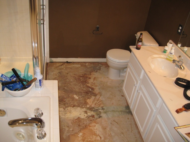 Just Took up my master bath Floor Help!!-img_0668.jpg