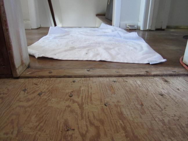 Bathroom Flooring Ideas And Advice: Need Advice On Bathroom Subflooring