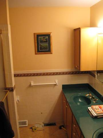 My bathroom remodel-img_0750.jpg