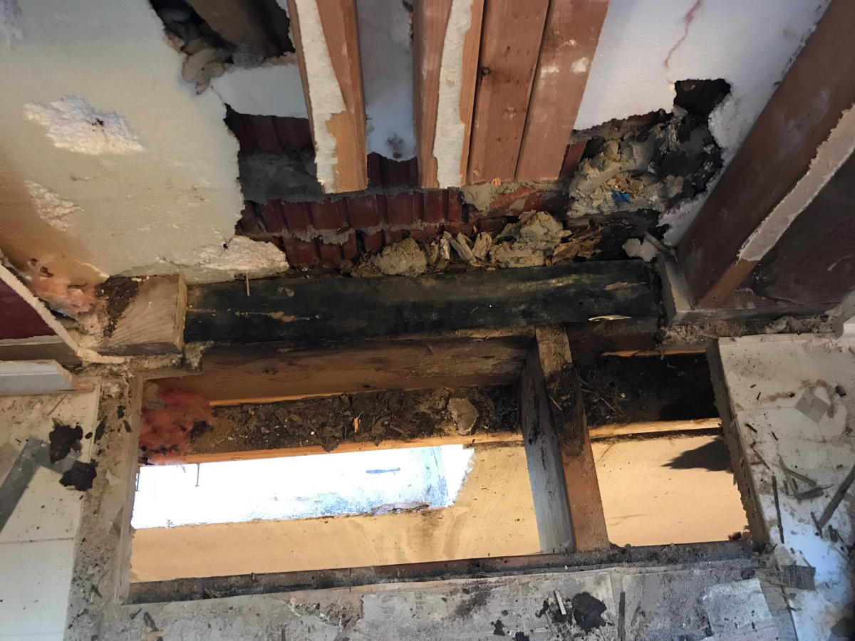 Rotted Studs, Baseplate, Sub Floor Replacement-img_0782.jpg