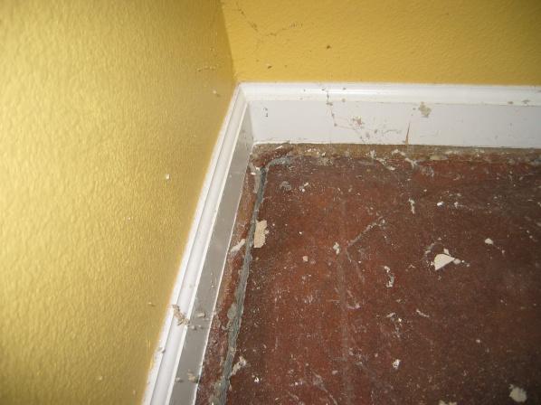 Slab Cracked Along Perimeter-img_0834.jpg