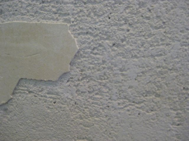 Plaster Wall Repair and Preparation-img_0892.jpg