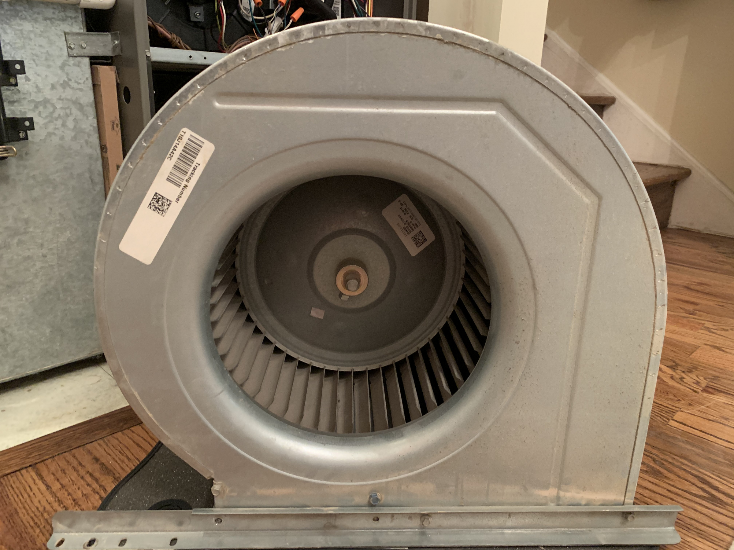 Lennox furnace squeaking /whining noise-img_0916.jpg