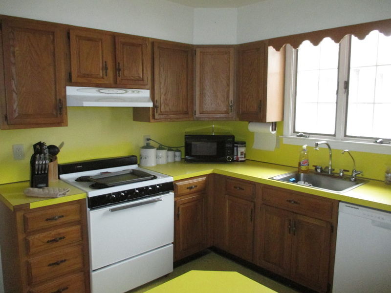 Laminate Backsplash and Horsehair Plaster-img_0927.jpg