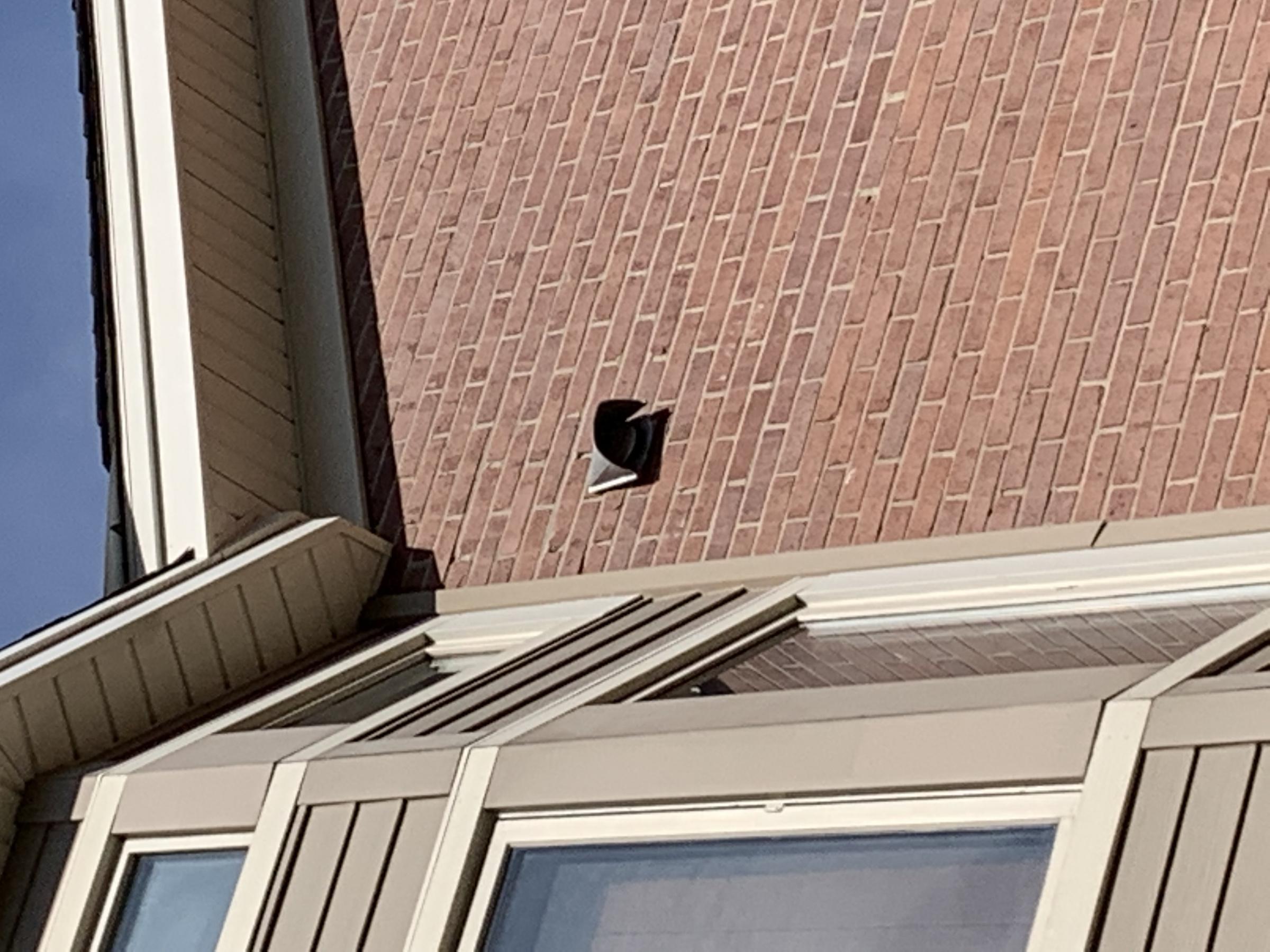 Exterior wall vent-img_0933.jpg