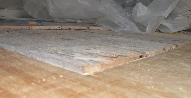 Old sub-floor thicker than new sub-floor-img_0970.jpg