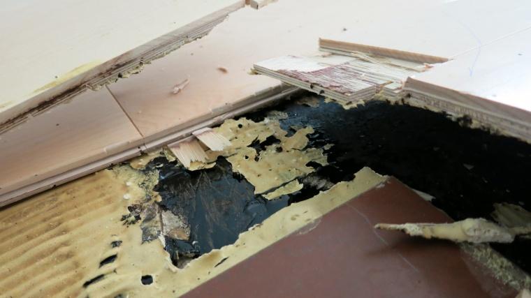 Black Mastic and Glue Down Prep-img_1006.jpg