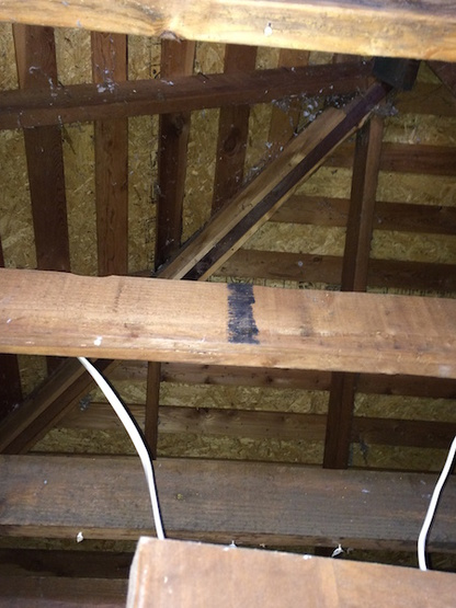 Vaulted Ceiling Insulating Amp Removal Of Ceiling Joists