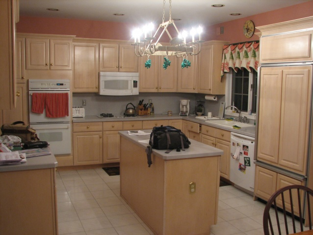 kitchen cabinet options-img_1048.jpg