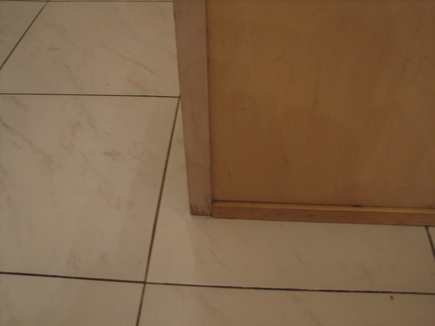 kitchen cabinet options-img_1056.jpg