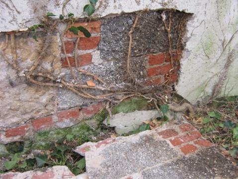 German House Rebuild-img_1137.jpg