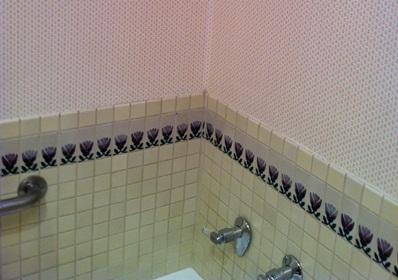 Add Shower Plumbing To An Existing Bathtub Plumbing Diy Home