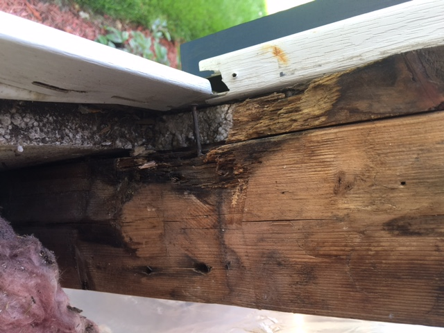 Should I Replace The Area In The Rough Window Sill That Has The ...