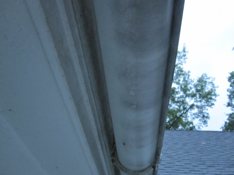 Gutters and Decorative Trim on Fascia-img_1179_resize.jpg