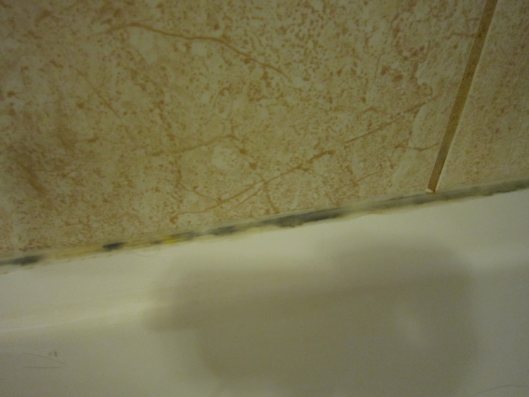 Mold from water leaking down through grout line-img_1222.jpg