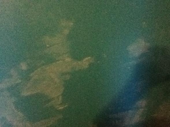Please help!!! Weird white streaks on wall-img_1297.jpg