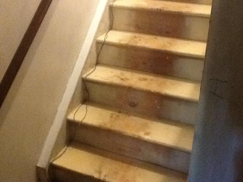 Perfect Repairing Closed Stringer Stairs Img_1353