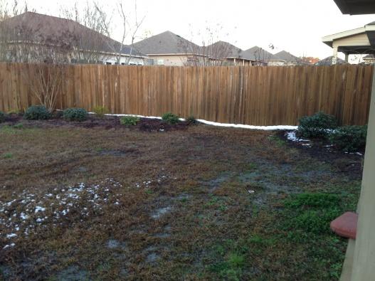 Help solve yard drainage issue-img_1357.jpg