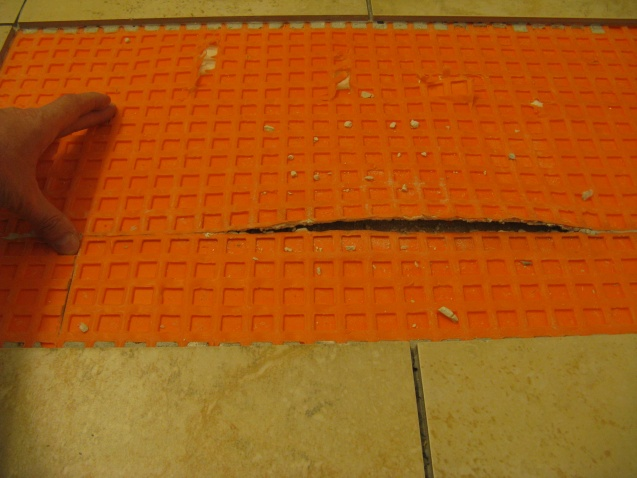 Replacing 2 ceramic tiles over Ditra-img_1358.jpg