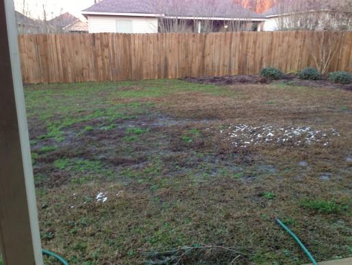 Help solve yard drainage issue-img_1358.jpg