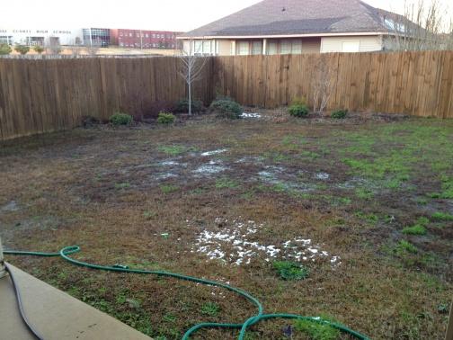 Help solve yard drainage issue-img_1359.jpg