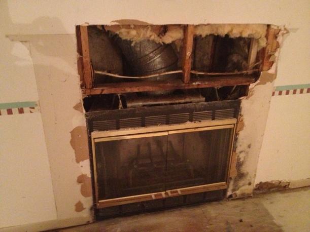 Fireplace Insert-img_1427.jpg