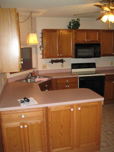 Looking to redo plain oak cabinets from 1991. Help??-img_1468.jpg
