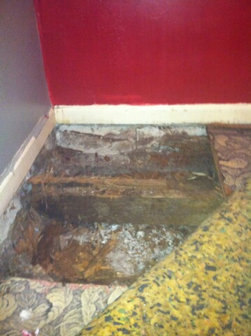 floor caved in...-img_1469.jpg