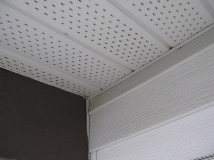How to gently remove (aluminum) soffit?-img_1476.jpg
