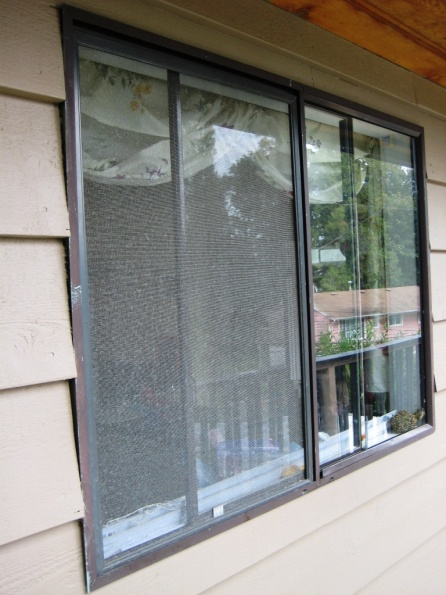 Replace Aluminum Windows-img_1527.jpg
