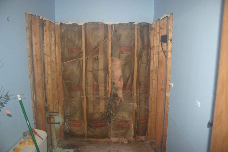 Bathroom Remodel-img_1561.jpg