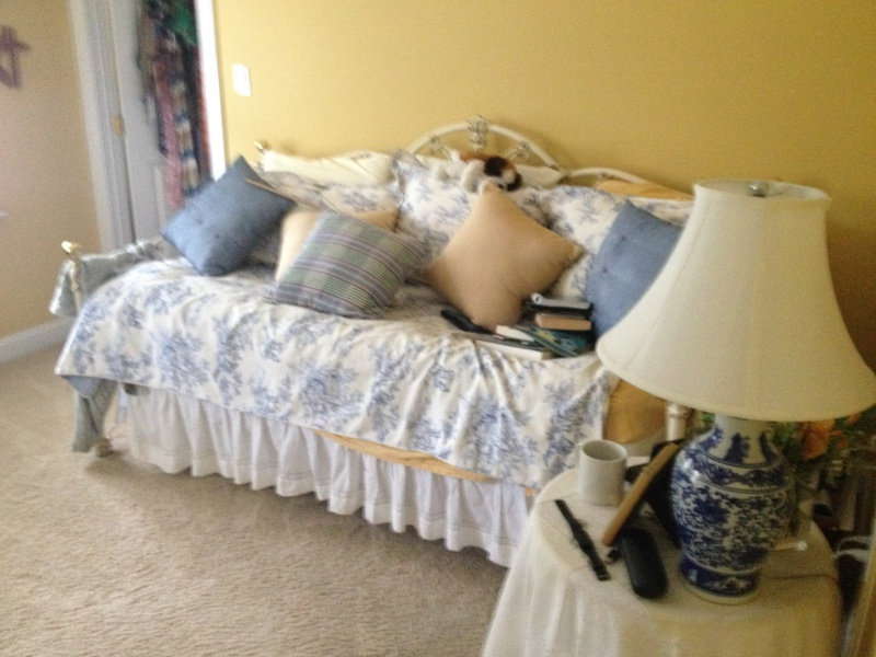 Decorating ideas Needed For Woman's Bedroom-img_1580.jpg