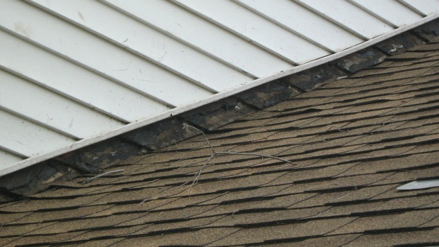 Stripped and Re-shingled, How to Fix Gap Between Siding and Shingles-img_1620.jpg
