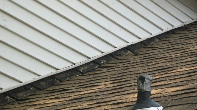 Stripped and Re-shingled, How to Fix Gap Between Siding and Shingles-img_1621.jpg